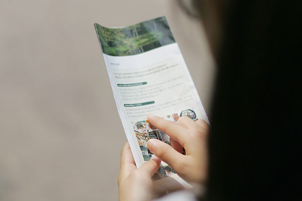 Top Tips on Designing A Truly Great Brochure